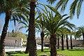 VIEW , ®'s - DiDi - RM - Ð 6K - ┼ , MADRID PARQUE de PEÑUELAS JARDÍN - panoramio (159).jpg