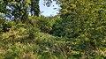 Valkenburg-Groeve in de Grindkuil (2).jpg