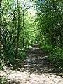 Valley Park Path - geograph.org.uk - 418311.jpg