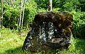 Vanapagana kivi.JPG