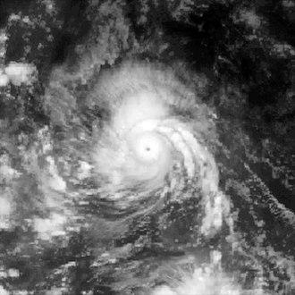 1979 Pacific typhoon season - Image: Vera 1979 peak intensity