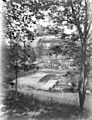 Vieille tour à travers les arbres, Caylus, 6 juin 1906 (4080187708).jpg
