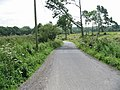 View along Water Lane in the direction of Woodsden - geograph.org.uk - 886051.jpg