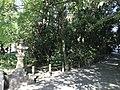 View near Oyamazumi Shrine Museum.jpg