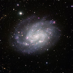 View of the southern spiral NGC 300.jpg