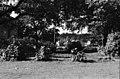 Viikinkaari 8. Näkymä Viikin Latokartanosta vanhan puutalon pihapiiristä - ser071631 (hkm.HKMS000005-km0000nw7o).jpg