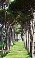 Villa Barberini Pontifical Gardens, Castel Gandolfo (46080473274).jpg