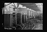 Vintage activities at Richon-le-Zion, Aug. 1939. Refrigerating apparatus in the cellars showing barrels beyond 2004 in collection LOC matpc.19786.jpg