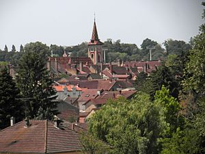 Louhans - Town center seen from Châteaurenaud
