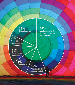 WMF annual report 2010-11, financials pie chart ES.png