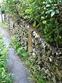 Walled footpath from The Row - geograph.org.uk - 991927.jpg