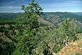 Wenaha-Tucannon Wilderness, Umatilla National Forest (36044547394).jpg