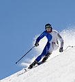 Werner Heel Les Alpes.jpg