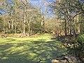 Wes Skiles Peacock Springs State Park, Luraville, Florida (40488890521).jpg