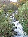 West Lyn river descending from Glen Lyn gorge - geograph.org.uk - 1612750.jpg