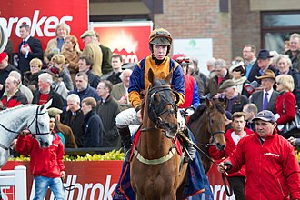 Andrew Lynch (jockey) - Andrew Lynch riding Whatuthink in 2013
