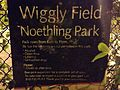 Wiggly field park Chicago.jpg
