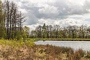 Wijnjeterper Schar, Natura 2000-gebied provincie Friesland 14.jpg