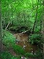 Willingford Stream, Dallington Forest - geograph.org.uk - 505859.jpg