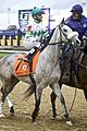 Winter Memories - Breeder's Cup Juvenile Fillies 2010.jpg