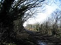 Winter morning on Moor Lane - geograph.org.uk - 695096.jpg