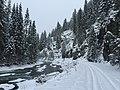 Winter on the North Fork of the Saint Joe River (25571229297).jpg