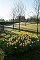 Woodhill way Cottingham IMG 0573 - panoramio.jpg