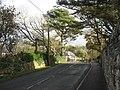 Woodland and cottage near Llanfaelog Parish Church - geograph.org.uk - 1049921.jpg