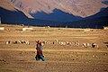 Zanskar Valley2.jpg