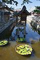 Zentsu-ji in Zentsu-ji City Kagawa pref43n4500.jpg