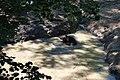 Zoologická zahrada Tábor - Větrovy (38).jpg