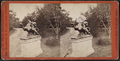 'Hollywood,' Long Branch, from Robert N. Dennis collection of stereoscopic views 2.png