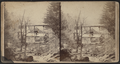 (Abram F. Palmer's shop in the pines below, south of Cornwall Plain or Pine Street, Andrew K. Palmer, s(t)anding on the back shop, by Seward J. Barnes.png
