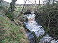 (Another) waterfall on Philip Burn - geograph.org.uk - 629491.jpg