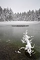 Äntu Sinijärv talvel.jpg