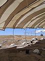 Çatalhöyük 2006 IMG 2190 (207459659).jpg
