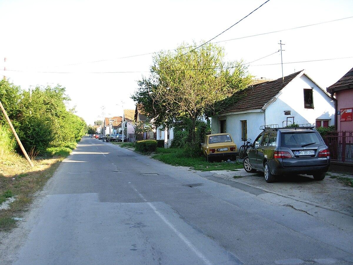 mapa novog sada sa pretragom ulica Šangaj (Novi Sad)   Wikipedia mapa novog sada sa pretragom ulica