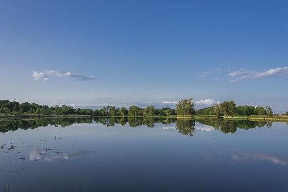 Бабигонский пруд в Петергофе.jpg
