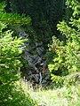 Каньона на река Бъндерица - panoramio - Красимир Косев (6).jpg