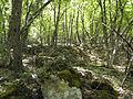 Крым - Мангуп-Кале 12.jpg