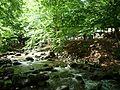 Кostina river,река Костина - panoramio.jpg