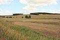 Лесостепь - panoramio (1).jpg