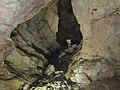 Новоафонская пещера. Олень и обезьяна - panoramio.jpg