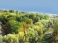 طبیعت روستای چکان=Chekan landscape - panoramio.jpg
