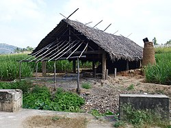 Shed for making jaggery