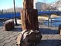 克兰河石桥边的硅化木景色 - panoramio.jpg