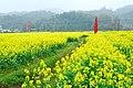 广州最美乡村—红山村 - panoramio (28).jpg