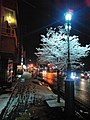 文化通り(郡山市) 雪の夜.jpg