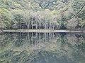 豊似湖・静寂(Lake Toyoni quietness) - panoramio.jpg