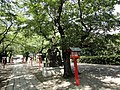 鷲宮神社 - panoramio (3).jpg